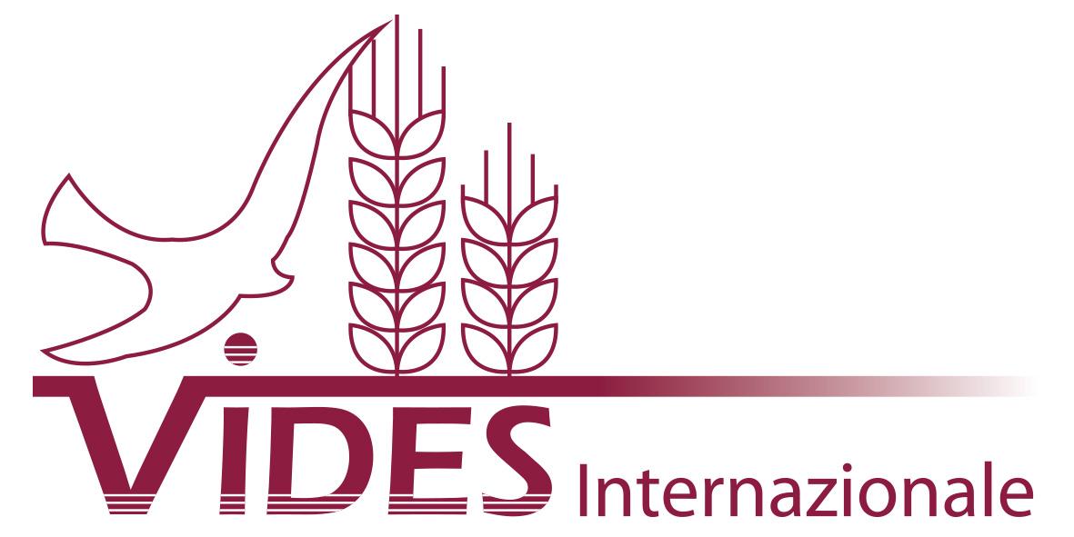 Vides Logo nuevo_2