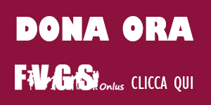 fai-una-donazione-fvgs-sm.png